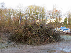 Photo: Priorslee Lake The yacht club have been doing some timely pruning of trees that could snag the masts of their boats as they get them in and out. (Ed Wilson)