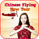 Chinese Flying New Year (game)
