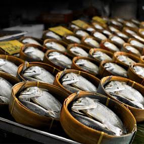 Fish Market, Thailand by Liang Deoz - City,  Street & Park  Markets & Shops ( pwcmarkets-dq )