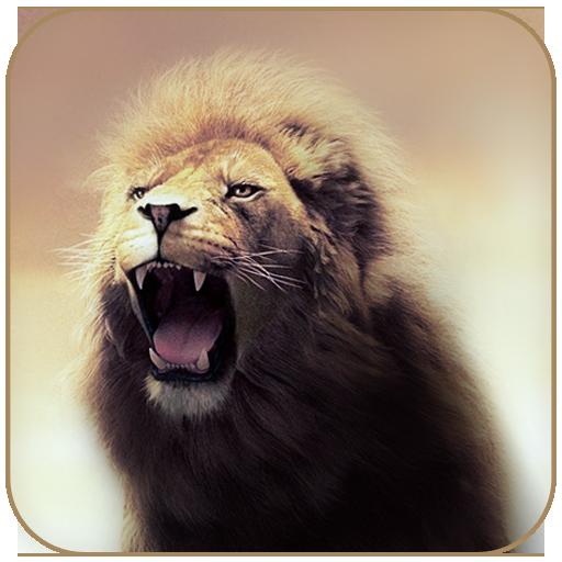 Wild Lion Theme