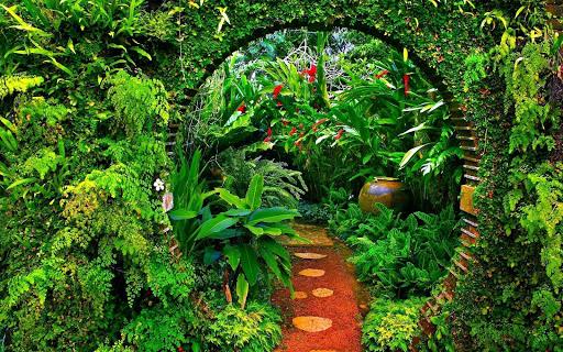 Garden Wallpaper 2.6 screenshots 1