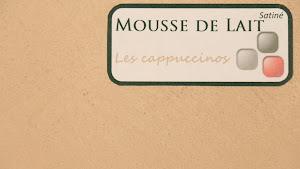 nuancier-les-betons-de-clara-beton-cire-mousse-de-lait-collection-les-cappucinos-decoration-interieure-enduit-decoratif_.jpg