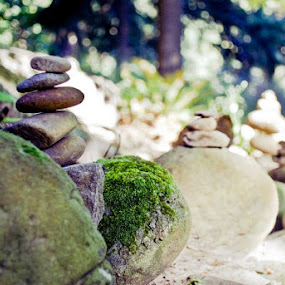 by Heather Hoppe - Nature Up Close Rock & Stone (  )