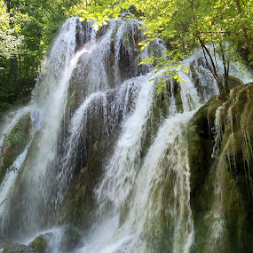 waterfall by Ionela Garovat - Nature Up Close Water ( water, nature, waterfall, forest )