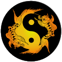 Acupuncture Assistant icon
