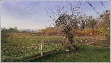 Photo: Str. Abatorului, vedere in zona - 2017.11.01