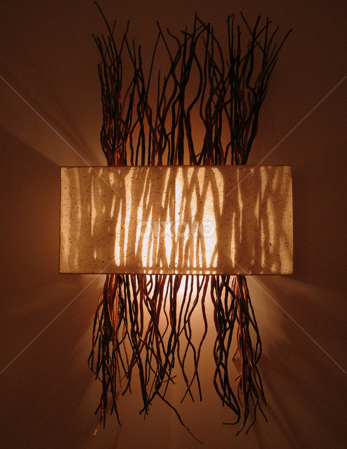 by Nancy Tharp - Abstract Patterns ( twigs, lighting, lamp, pwclines, mood light )