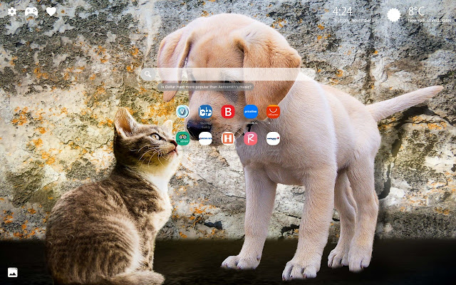 Cats and Dogs Theme