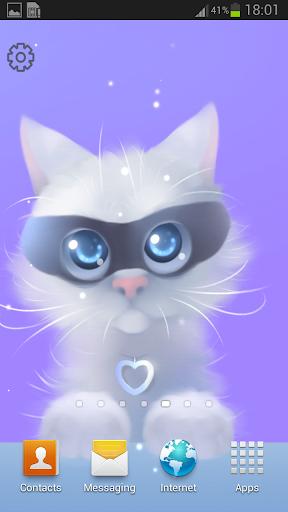 Baby Yang Kitten