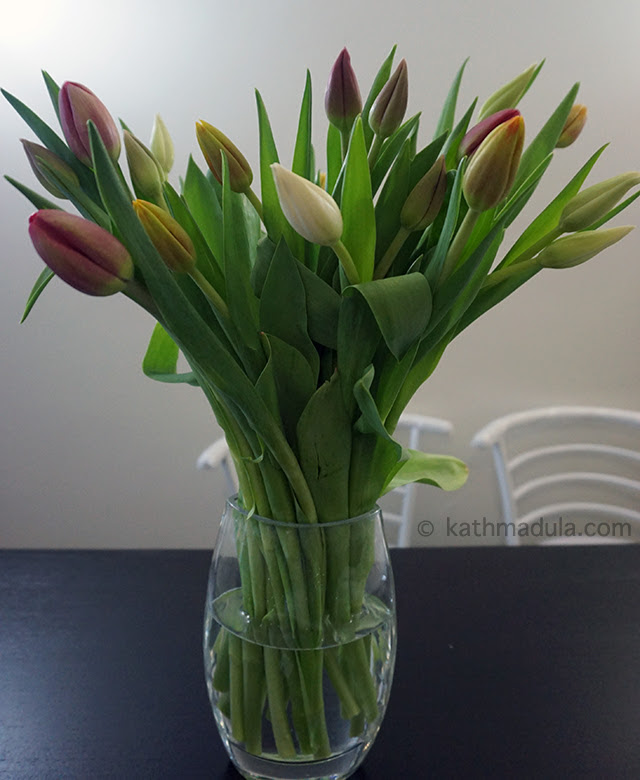 Fresh Flowers: Vivid Tulips