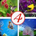 4 фотки 1 слово icon