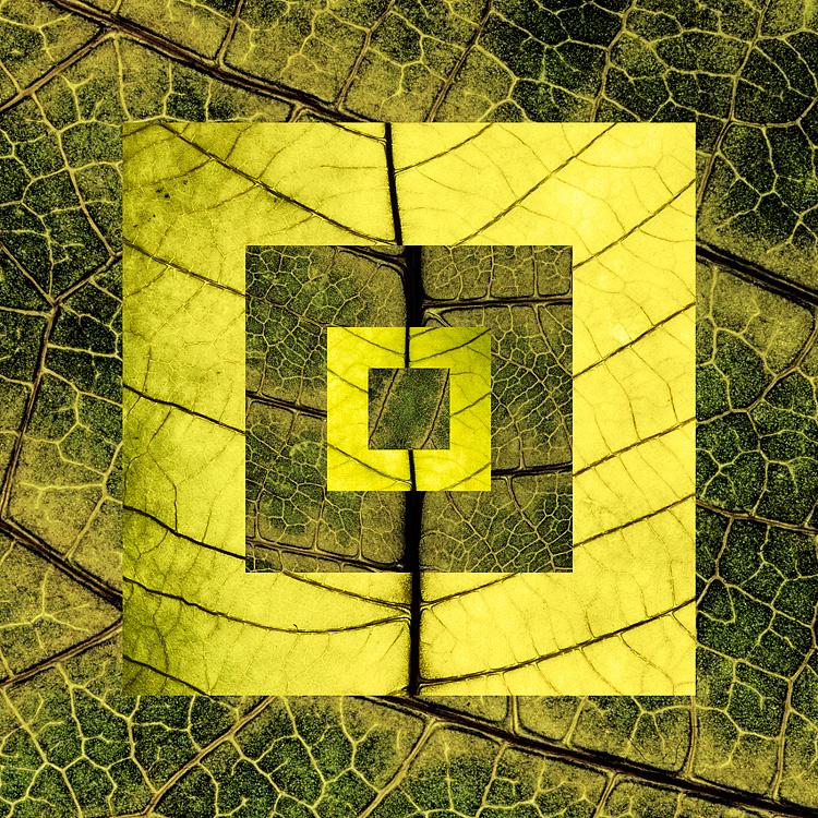 Reinterpretations 03 - Concentric Square di pamar5