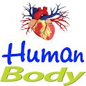 Human body icon