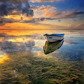The End of Journey by Hendri Suhandi - Landscapes Sunsets & Sunrises ( clouds, shore, karang, bali, sea weed, indonesia, sanur, mood, sunrise, travel, coast )