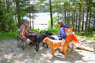 Photo: Friends and pets relaxing at Woodford State Park by Linda Carlsen-Sperry