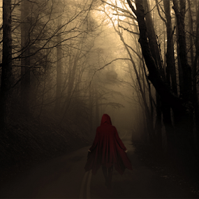 Lady Red and the Wolf by Todd Young - Digital Art People ( red, fog, wolf, woman, lady, trees, cloak, red ridinghood, road, woods, boots, coat )