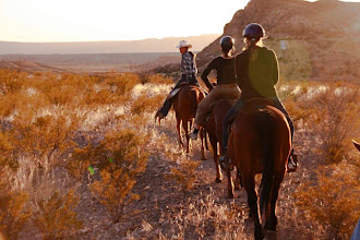 Photo: Sunset HorsebackTrail Rides are gorgous!