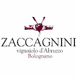 Logo for Zaccagnini