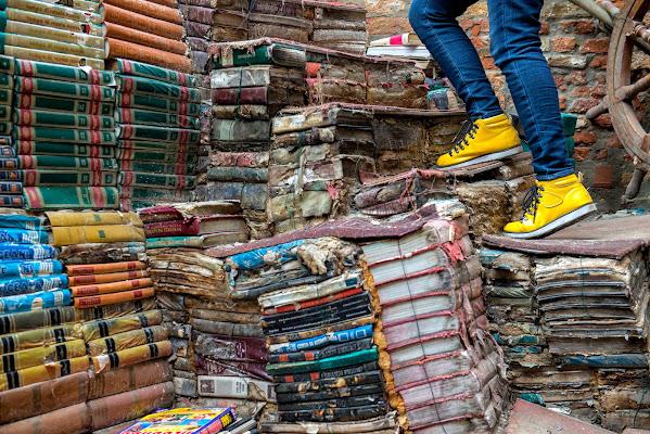 Venezia, libreria Acqua Alta. di cicciobello
