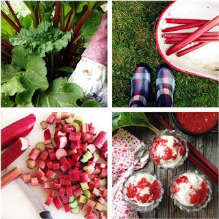 Easy Stewed Rhubarb Recipe