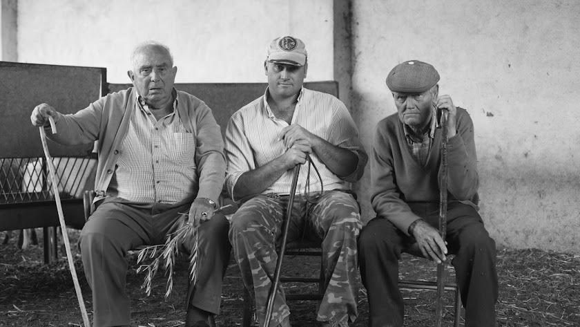 Imágenes del proyecto 'Luzas y morras' que recoge el testimonio de los pastores del Valle del Almanzora y se estrenará en la Feria del Esquilo.