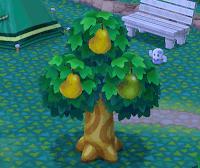 おいしいフルーツ2つ同時になった画像