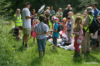 Photo: Some participants were given special nets to collect bugs from the meadow grass