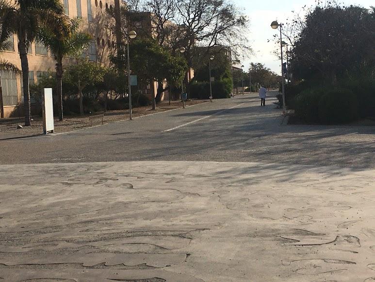 Campus de La Cañada, a la espera de la llegada de alumnos y profesores.