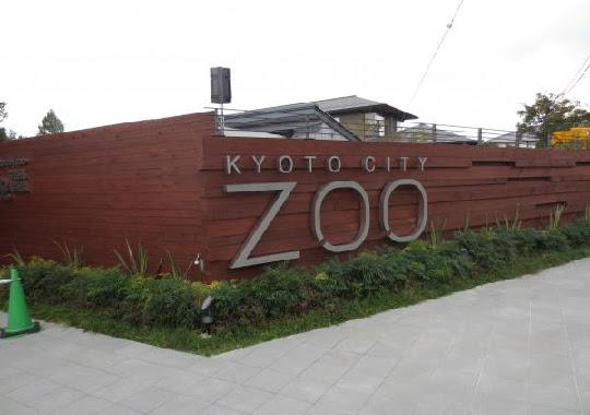 kyoto-zoo