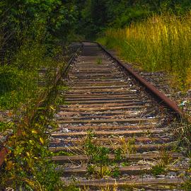 by Ralf  Harimau - Transportation Railway Tracks