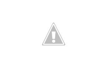 Photo: Pied Butcher-Birds & Blue-Faced \ Noisy Miners