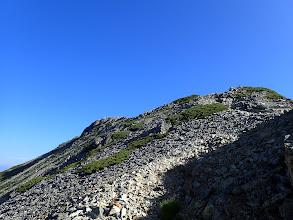分岐と山頂(左)を確認