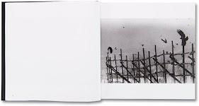 raven vliegend rond een houten hek