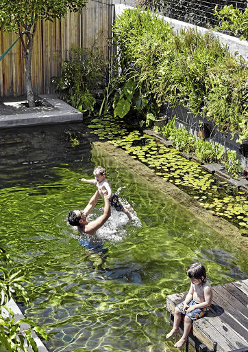 The low-maintenance  eco-pool resonates with the  farm-style character of the cottage. It uses no chemicals and the water is filtered through plants.