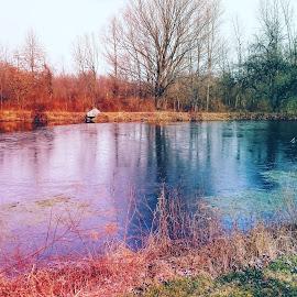 by Johnna Replogle-Bloss - Nature Up Close Water