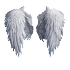 KNOW YOUR ANGELS - Know About Your Guardian Angel