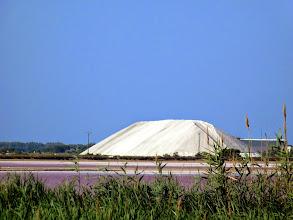 Photo: les camelles de sel