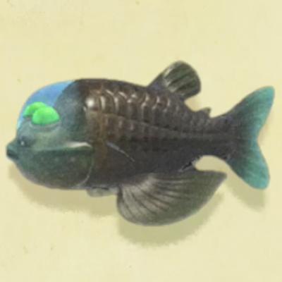 あつ森魚 値段