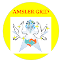 Amsler Grid Macular Degeneration Test icon