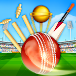 Cricket WorldCup Championship 2018 Icon