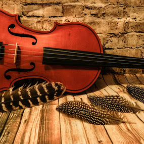 by D.M. Russ - Artistic Objects Musical Instruments (  )