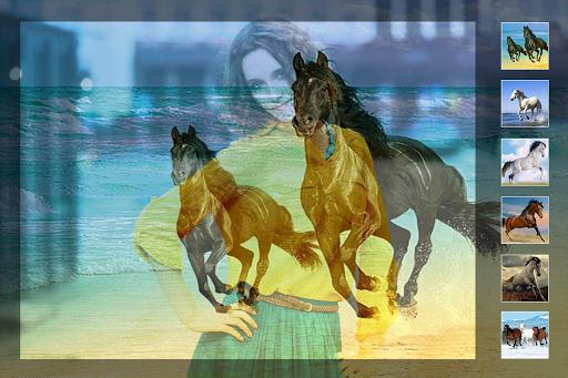 馬の写真のブレンド