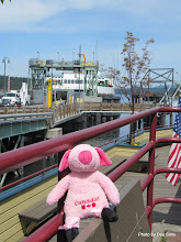 Photo: (Year 2) Day 332 - Pippa the Pig Arriving in Friday Harbor
