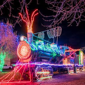 Christmas Train by Evan Jones - Public Holidays Christmas ( holiday, lights, christmas, train )