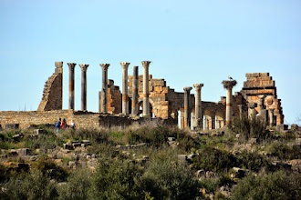Photo: My next stop to the the very remarkable Roman ruins of Volubilis - the antique Roman capital of Morocco