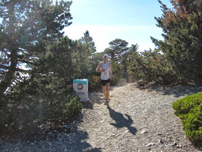 Photo: Eric Martin in First Place Eric Martin 28, of La Jolla, is our first runner. He retained his lead to win the race in 1:07:54. Here the runners transition onto the Devils Backbone section. 8:49 AM