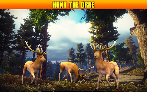 Deer Hunting 19 image | 19