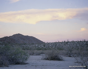 Photo: Dusk at Bow Willow wash; Anza Borrego Desert State Park