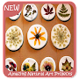 Amazing Natural Art Projects APK icon