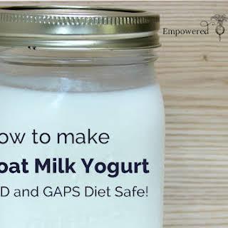 Goat Milk Yogurt for SCD and GAPS Diet.